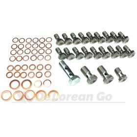 Complete Stainless Banjo Bolt Kit