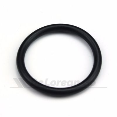 O Ring Seal (timing cover blanking plate)
