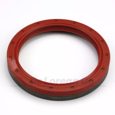 Crankshaft Rear Main Seal