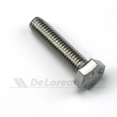 Stainless M6 Bolt