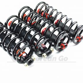 Performance Shock AND SPRING Set (DeLorean Europe) (1 week lead time)