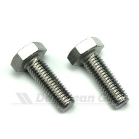 Stainless M10 Bolts for new radiators (PAIR)