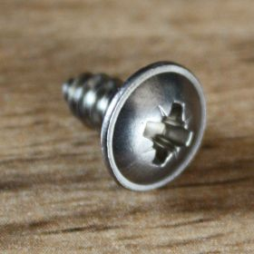 Stainless Headlight Screw