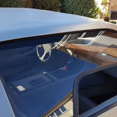 Internal Door Glass Headliner Finishing Trim (PAIR)