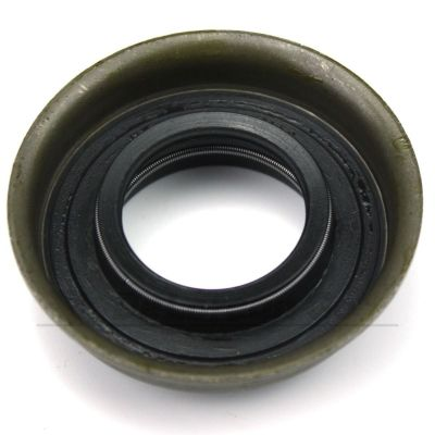 Input Shaft Lip Seal (new)