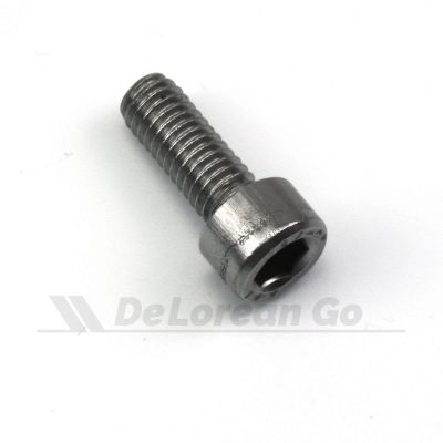 Stainless M6 Screw
